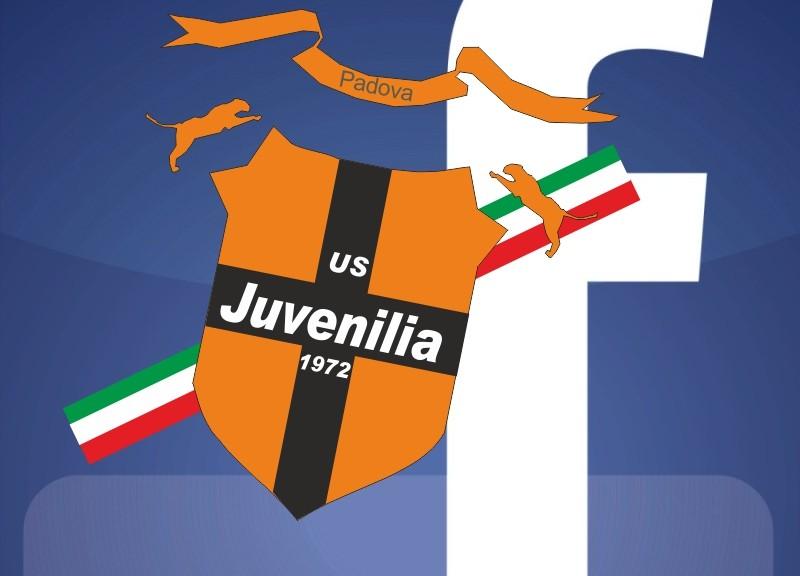 Facebook juvenilia